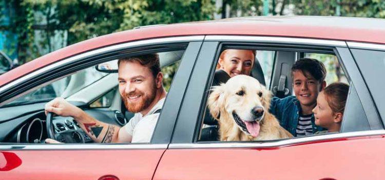 Несколько советов, как сделать поездку в автомобиле более комфортной